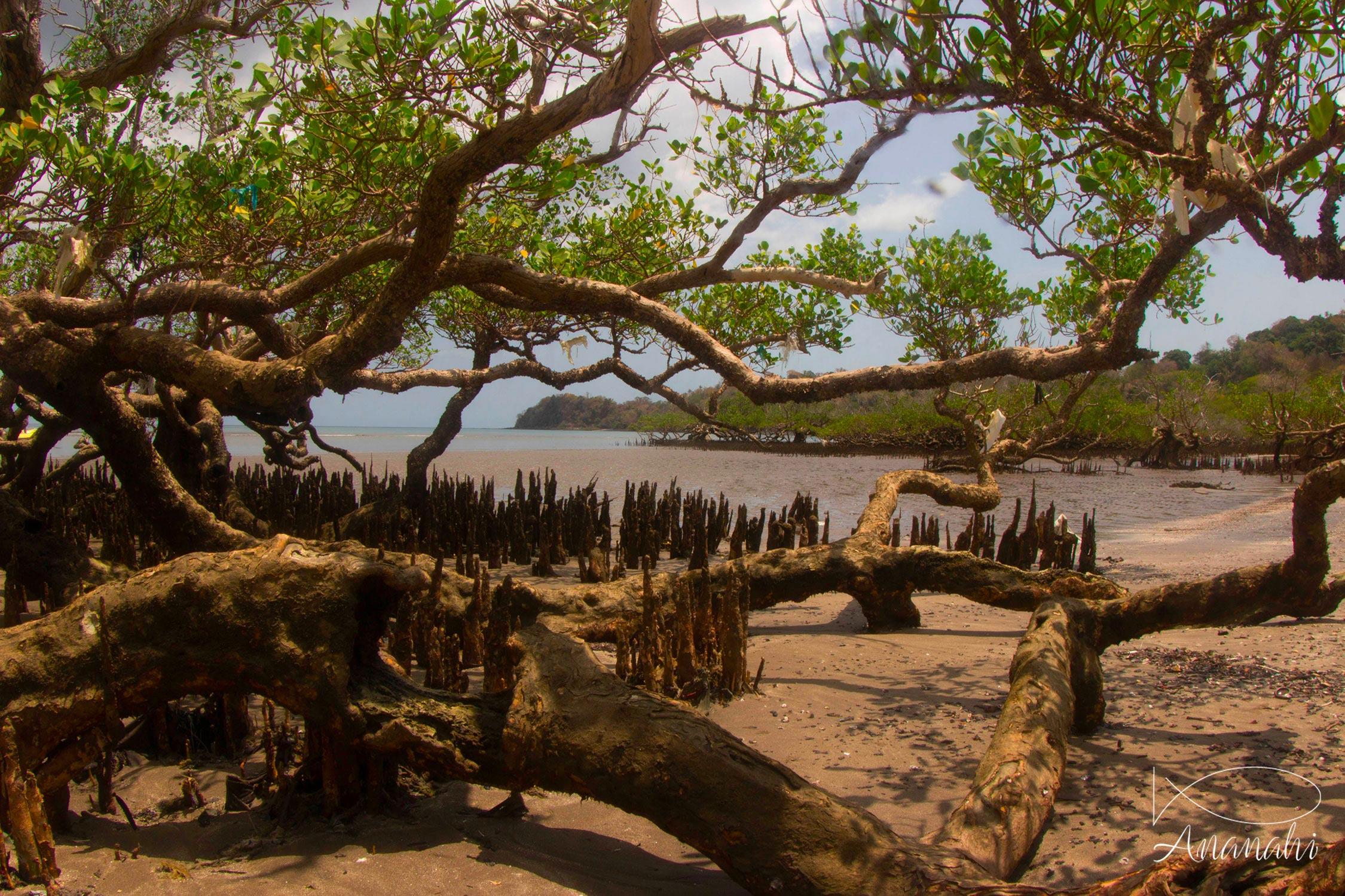 Paysages de Mayotte de Mayotte